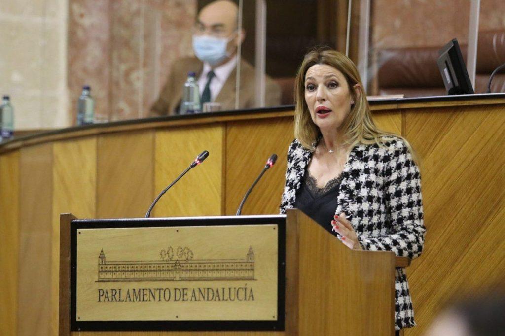 Ciudadanos defiende en el Parlamento andaluz el Cierre del Anillo, «infraestructura clave para el área metropolitana»